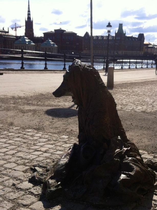 Den tiggande hunden Stockholm HCG 2013