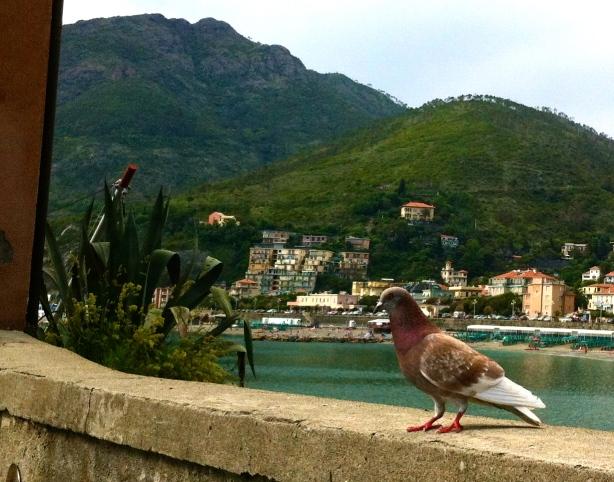 Levanto Liguria HCG2013