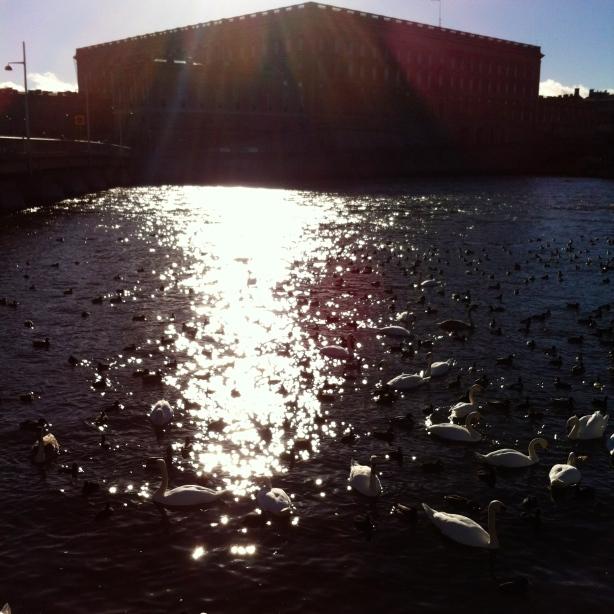 Stockholm Castle HCG2014
