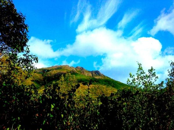 Liguria - Monte Rossola H Carlberg