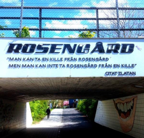Rosengård H Carlberg
