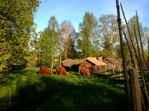 Gammelgården Dalarna Håkan Carlberg